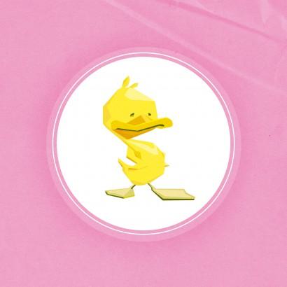 duck_002
